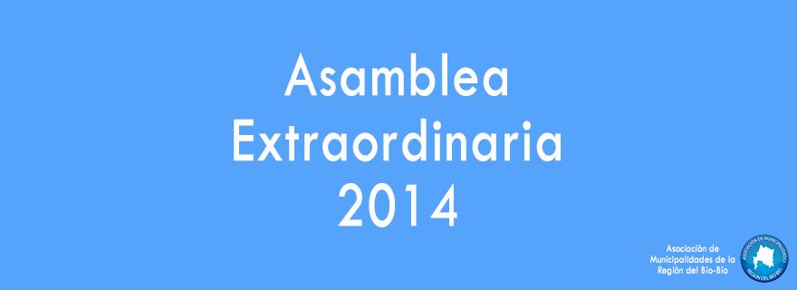 asamblea-banner