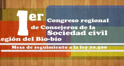 congreso-consejos-sociedad-civil-biobio