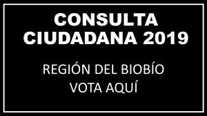 BANNER CONSULTA CIUDADANA 2019